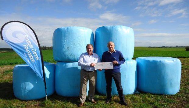 Blue bales in support of prostate cancerawareness